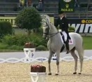 Hip hop in world equestrian games